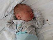 Radek Tarant se narodil Lence Spurné z Ústí nad Labem 10.dubna v 9.14 hod. v ústecké porodnici. Měřil 50 cm a vážil 3,35 kg