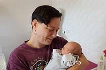 Štěpánka Keclíková se narodila Stanislavě Keclíkové z Dolních Zálezel 7. srpna v 17.18 hodin v Ústí nad Labem. Měřila 39 cm, vážila 1,3 kg