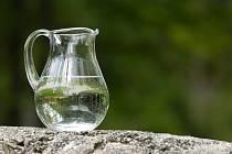 Žádný nápoj – tedy žádná káva, čaj či limonády - nenahradí pramenitou vodu.