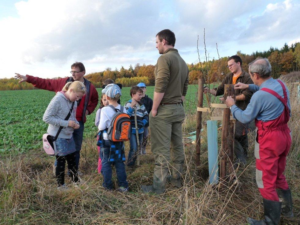 Na podzimní výsadbu stromů je možné získat grant. Důležité je, aby se do sázení zapojila místní veřejnost a sázely se druhy, které jsou na území původní.