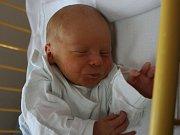 Marek Javořík ml. se narodil Tereze Volákové a Marku Javoříkovi st. z Ústí nad Labem 29. srpna v 10.29 hod. v ústecké porodnici. Měřil 49 cm a vážil 3,03 kg.