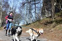 Půlmaraton v Tiských stěnách.