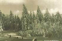 Zimní pozdrav z Adolfova. Bývalo zde pěkně... a  zase je. (1924)