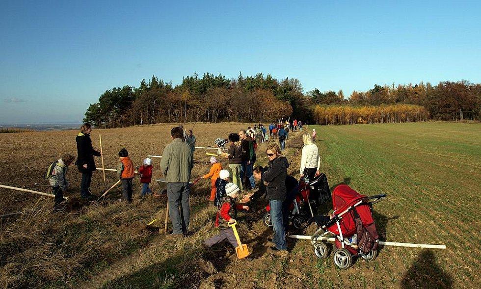 Vysadíte si 28. října 2011 i vy svůj strom?