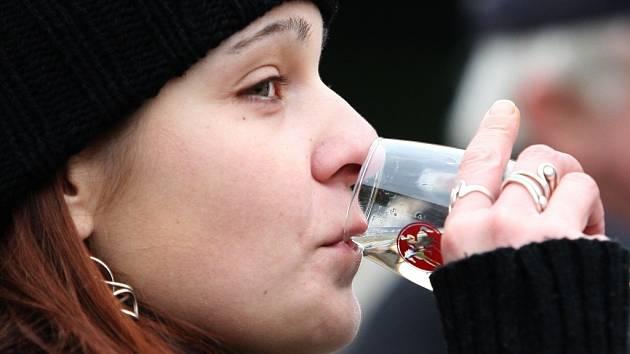 V Ústí nad Labem na Lidickém náměstí se oslavy Svatomartinského vína konají již posedmé.