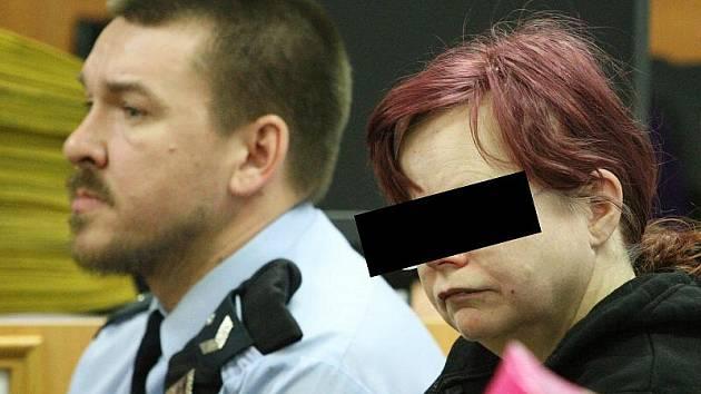 Ze soudní síně on – line jsme sledovali mimořádný proces u ústeckého krajského soudu. Četba obžaloby připomínala scénář tvrdého dětského porna.