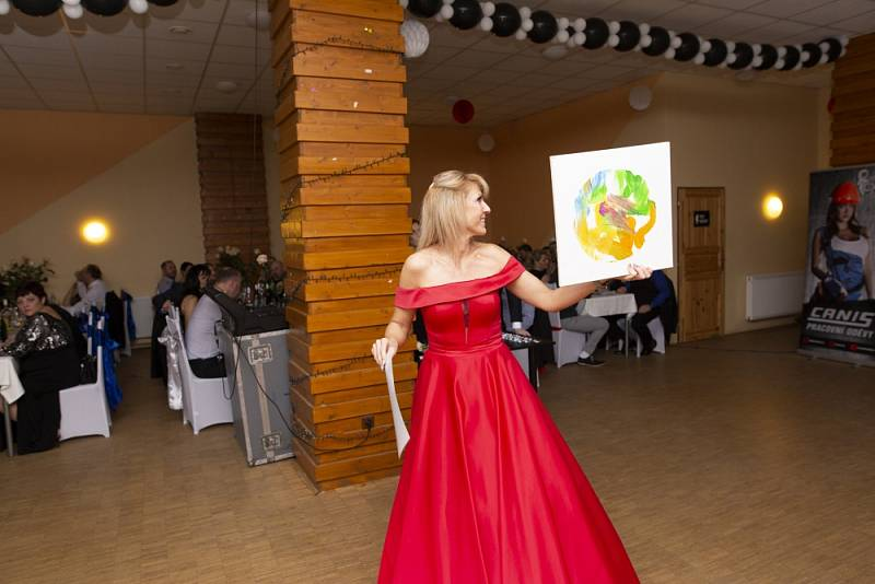 Druhý ročník Společenského plesu Severní Terasy