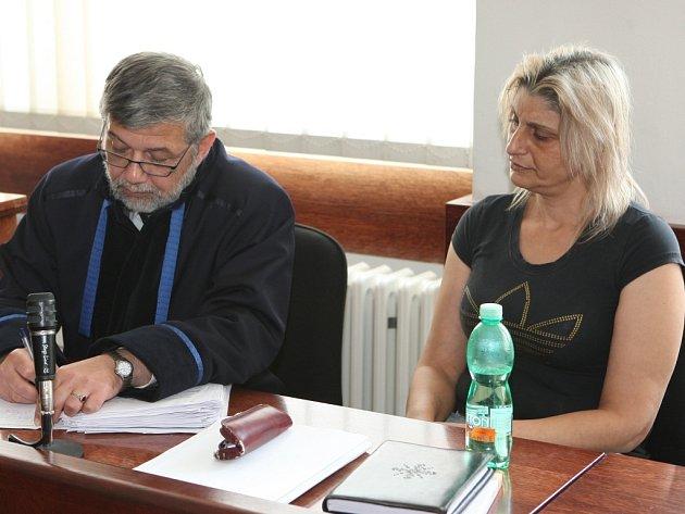 Okresní soud poslal na sedm let do vězení Martu Buncíkovou za to, že srazila v Povrlech jedenáctiletého chlapce a z místa nehody ujela.