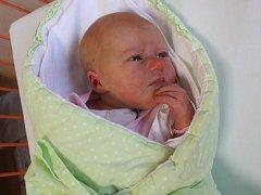 Adina Dvořáková se narodila Pavle Dvořákové z Ústí nad Labem 25. listopadu v 19.08 hod. v ústecké porodnici. Měřila 50 cm a vážila 3,55 kg