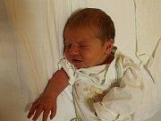 Dominik Pechek se narodil Veronice Svádové z Ústí nad Labem 1. září v 10.52 hod. v ústecké porodnici. Měřil 51 cm a vážil 3,4 kg.