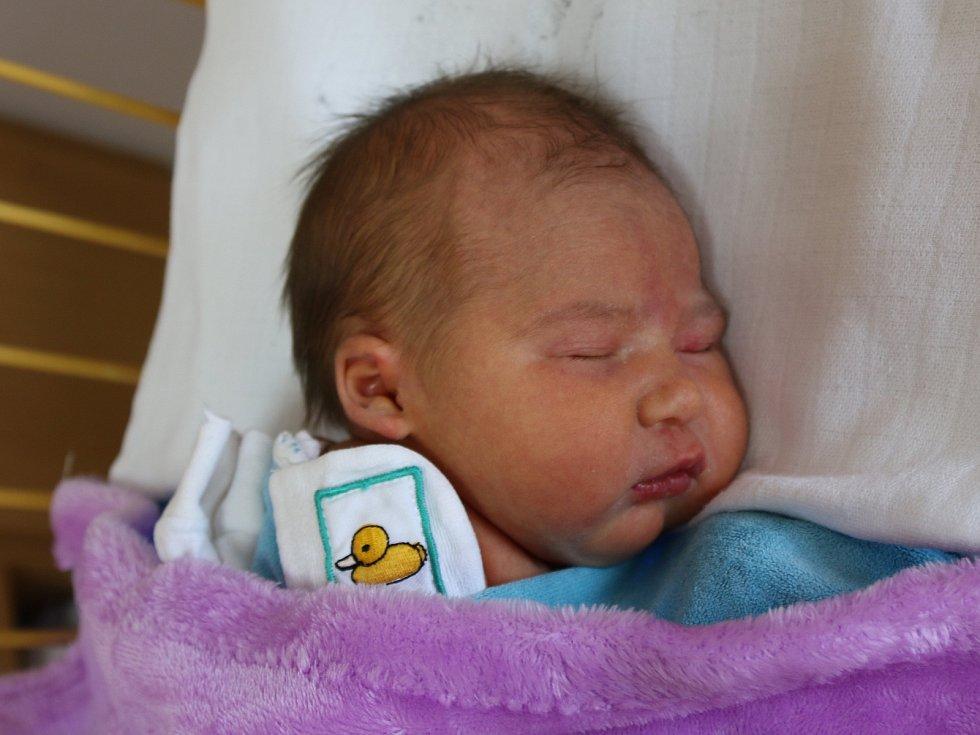 Lauren Jarkovská se narodila Simoně Müllerové z Bořislavi 6.května v 0.40 hod. v ústecké porodnici. Měřila 49 cm a vážila 3,35 kg