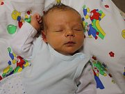 Tomáš Patera se narodil v ústecké porodnici 16. 2. 2017 (16.56) Anně Staňkové. Měřil 51 cm, vážil 3,47 kg.