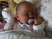 Nela Slanařová se narodila v ústecké porodnici 11. 3. 2017(19.55) Heleně Slanařové. Měřila 50 cm, vážila 3,8 kg.
