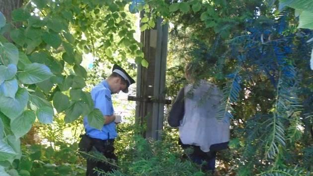 Bezdomovec z Děčína spal v křoví v areálu Vrchlického sadů.