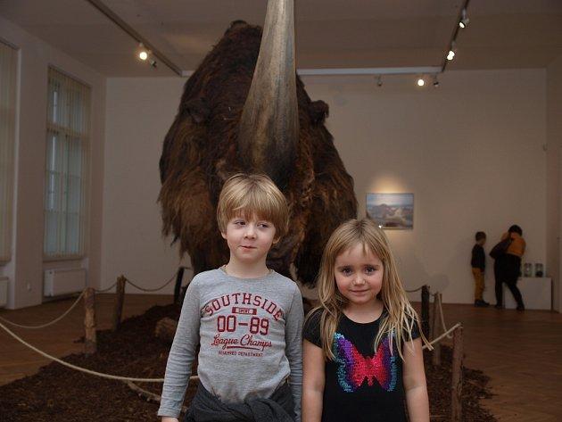 Navštívili jsme s dětmi výstavu Giganti doby ledové v Muzeu města Ústí nad Labem. Děti byly z prehistorických zvířat nadšené.