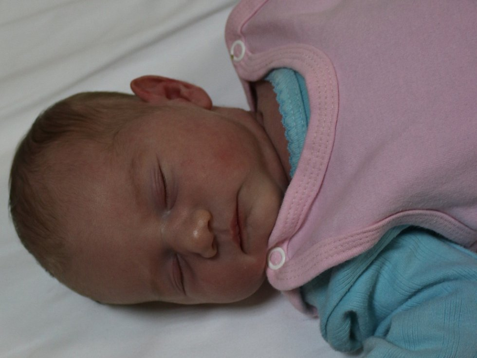Anna Herzinová se narodila v ústecké porodnici 23.1.2017 (18.21) Janě Šimralové. Měřila 49 cm, vážila 3,15 kg.