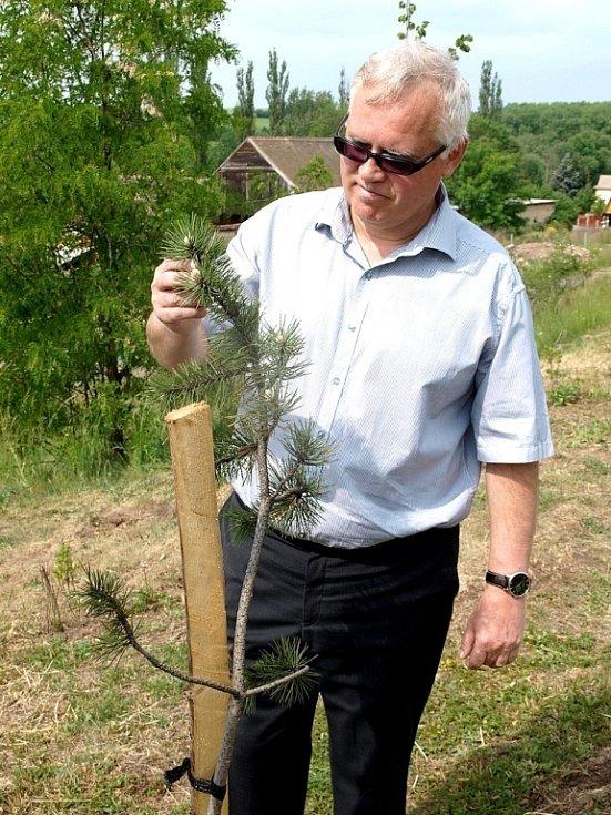 V obci Hora Svatého Šebestiána podle starosty Jana Koutského vysadili 146 nových stromů.