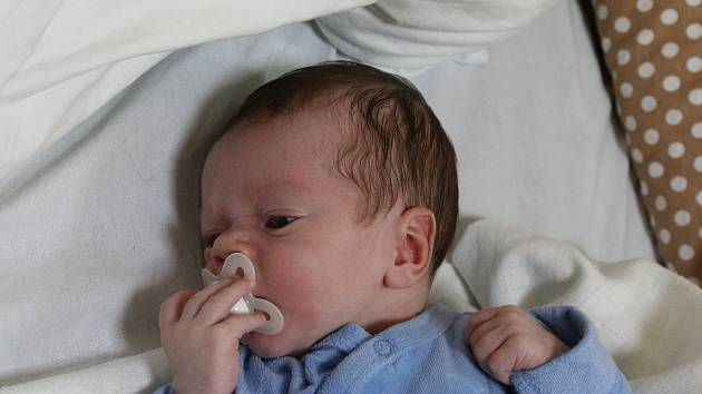 Alex Plodík se narodil Kateřině Plodíkové ze Štětí 3. ledna v 7.11 hodin v Ústí nad Labem. Měřil 52 cm, vážil 3,6 kg