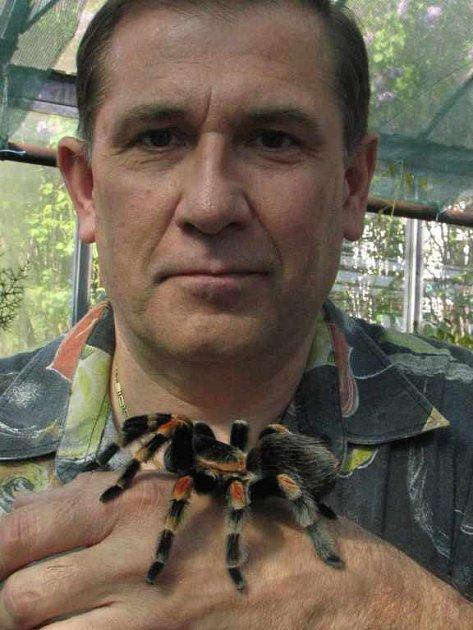 Výstava pavouků probíhá ve skleníkách university