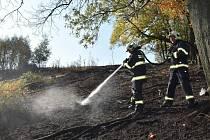 Požár lesa u Petrovic na Ústecku.