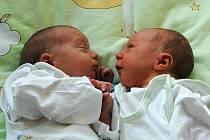 Michaela Balková, porodila v ústecké porodnici dne 19. 6. 2011 (0.49) syna Lukáše (49 cm, 3,1 kg) a (0.55) syna Jakuba (47 cm, 2,87 kg).