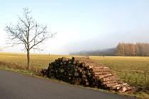 V Ústí mlha, v Adolfově bylo sluníčko.