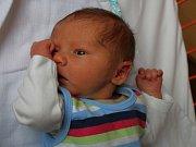 Vojtíšek Krupica se narodil v ústecké porodnici 13.4.2017 (8.16)Adrianě Krupicové. Vážil 3,43 kg.