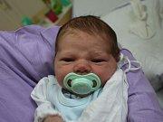 Adam Ackermann se narodil Nikole Tesařové z Ústí nad Labem 5. září v 10.21 hod. v ústecké porodnici. Měřil 53 cm a vážil 4,08 kg.
