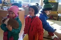 Během ukázkových dnů navštívilo celkem 6 MŠ s předškolními dětmi výuku v prvních třídách.