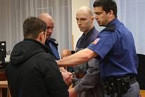 David Černý, šestadvacetiletý muž z Teplic – Trnovan, byl v pondělí před devátou hodinou ranní vězeňskou eskortou přiveden před trestní senát ústeckého krajského soudu.