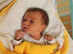 Beáta Kopřivová se narodila v ústecké porodnici 10.12.2016 (3.07) Dagmar Kopřivové. Měřila 45 cm, vážila 2,11 kg.