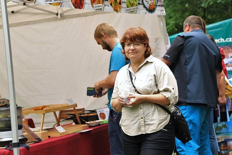 Multikulturní festival Barevná planeta v Ústí nad Labem.