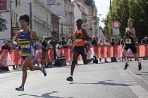 Mattoni 1/2 Maraton uzavře v sobotu centrum Ústí a dolní Střekov.