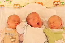 Aneta, Dorota a Amálie Kacafírkovy se narodily ústecké porodnici 23.6.2015 (9.55, 9.56 a 9.58) Miroslavě Alabi. Měřily 44 cm, vážily 1,98, 2,45 a 1,88 kg.