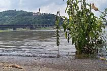 30. června 2009: Hladina Labe v úterý 30. června v poledne dosahovala výšky přes 470 centimetrů.