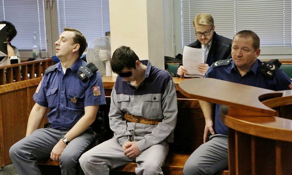 Před senátem Krajského soudu v Ústí nad Labem stanul obžalovaný Pavel Jan N. Obžaloba ho vinní ze zneužívání nezletilých, dětské pornografie a krádeže.