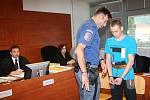 Případem brutální vraždy teplické prostitutky se ve středu začal zabývat Krajský soud vÚstí nad Labem. Obžalovaným je 29letý Ukrajinec Andrii Matsola.