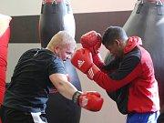 Kubánští boxeři při tréninku.