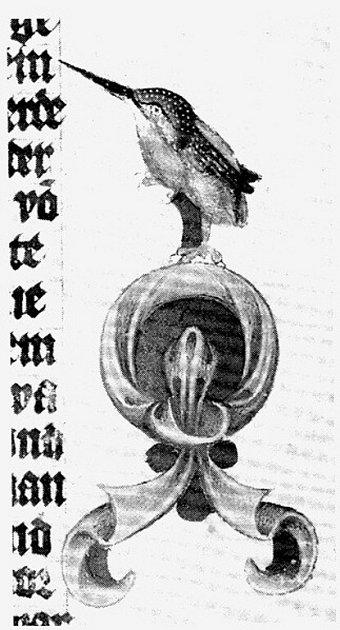 Ledňáček ztočenicí – symbol Václava IV. ilazebnického řemesla.