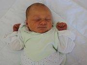 Martínek Hříbal se narodil v ústecké porodnici 10. 5. 2017 (0.17) Martině Rabasové. Měřil 49 cm, vážil 3,25 kg.