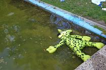 """Osušky, na nich opalovací krémy, ve vodě hračky. Tak vypadá koupání v laguně. Po cachtání ale zůstává okolí plné odpadků a odhozených věcí. """"Děti se koupou oblečené, sedají na trysky, dokonce si tu myjí hlavu,"""" stěžuje si Monika Volfová z Ústí."""