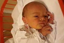 Alice Šterclová se narodila Pavlíně Šterclové a Romanu Šterclovi z Ústí nad Labem 1. října v 19.35 hod. v ústecké porodnici. Měřila 50 cm a vážila 3,05 kg.
