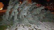 Vichr skolil strom před radnicí na Severní Terase