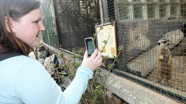 Také ústecká zoo je mezi čtrnácti zahradami v České republice, v nichž mohou návštěvníci hlasovat o NEJ... mládě roku 2013.