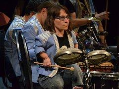 Nadšení hudební vozíčkáři The Tap Tap Severočeské divadlo.