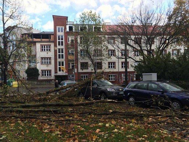 Strom spadl na auto vPalachově ulici vÚstí.