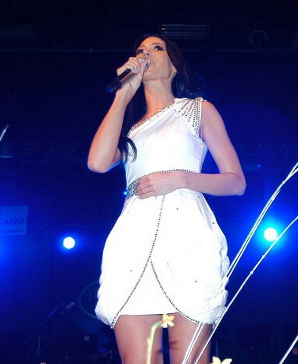 V Domě kultury se odehrál 29. ledna 2011 již 14. Ples  Ústečanů.