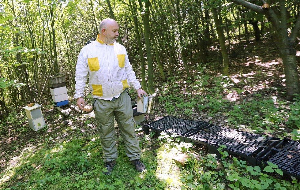 Škoda je téměř 160 tisíc korun. Včelaři zůstal na stanovišti pouze jeden úl s oddělkem.