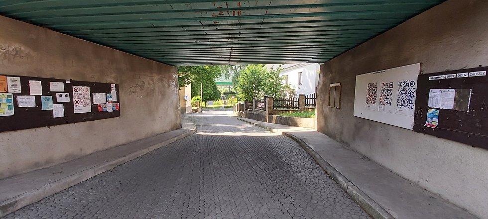 Z procházky po Dolních Zálezlech.