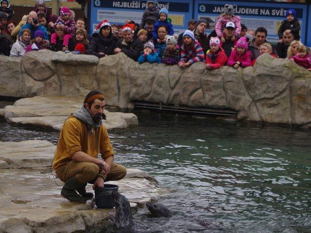 Štědrý den v zoologické zahradě